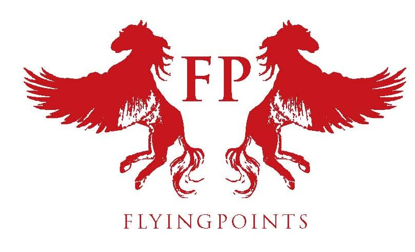 Flying Points seal